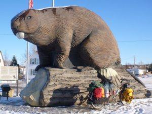 Beaverlodge's giant beaver